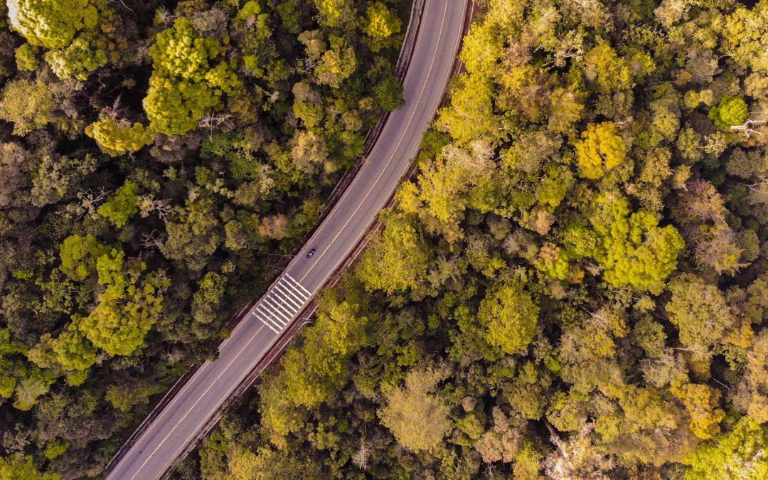 Hasta siempre, carretera Escuintla-Puerto Quetzal